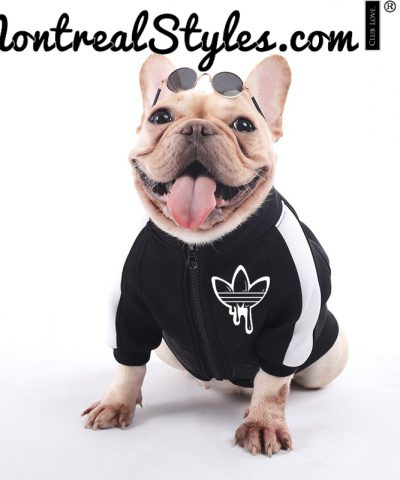 Pet's Apparel